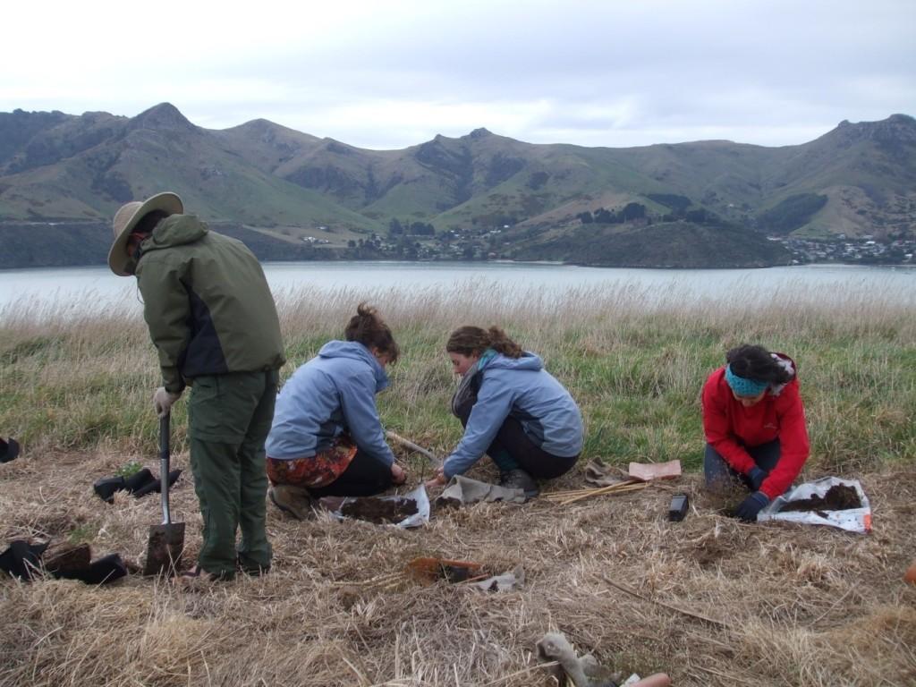 Planting on Quail Island